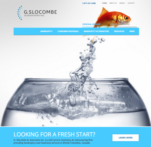 Slocombe Screen Shot Home page